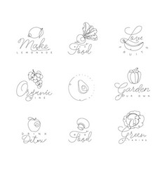 fruits and vegetables pen line symbols vector image vector image