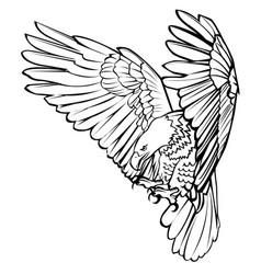 bald eagle attack swoop landing black line vector image