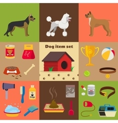 Dog care object set items and stuff vector image vector image