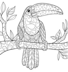 adult coloring bookpage a cute toucan on the vector image