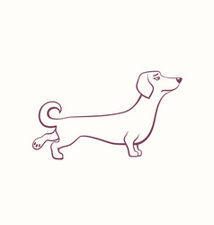 Cartoon dachshund in the ink contour style vector