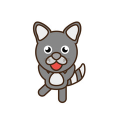 Cute raccoon toy kawaii image vector
