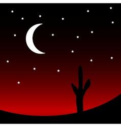 Desert at night vector image