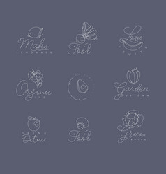 fruits and vegetables pen line symbols grey vector image