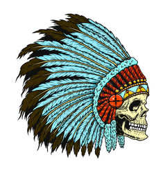 native indian skull in traditional headdress vector image