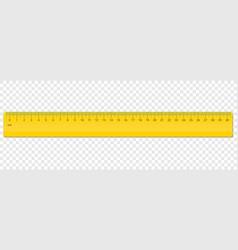 ruler centimeter cm scale plastic vector image