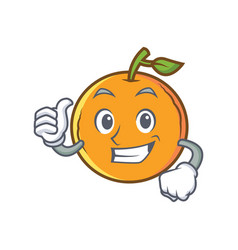 Thumbs up orange fruit cartoon character vector