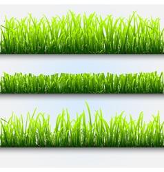 green grass for design vector image