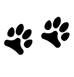 animals footprints isolated on white background vector image