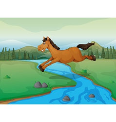 Horse crossing river vector
