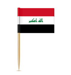 iraq flag toothpick vector image