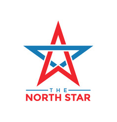 north star graphic design template vector image