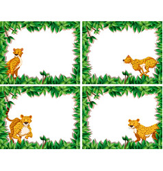 set of cheetah on nature frame vector image