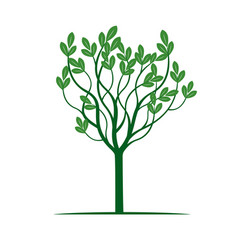 Spring tree with green leaves vector