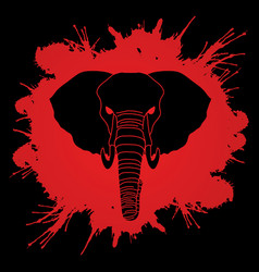 angry elephant head front view vector image vector image