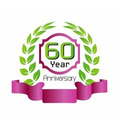 60 year birthday celebration vector