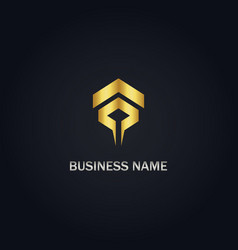 abstract shape arrow gold logo vector image