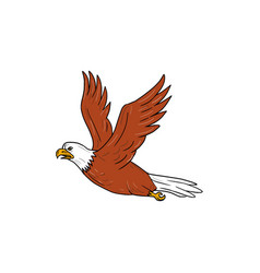 Angry eagle flying cartoon vector