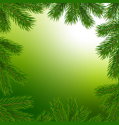 frame with christmas tree branches vector image