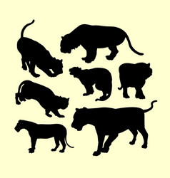 Panther puma and tiger animal silhouette vector