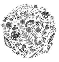 Round floral design with black and white shepherd vector
