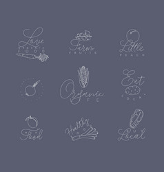 vegetables and fruits pen line symbols grey vector image