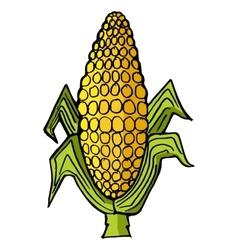 Ear of corn vector image vector image