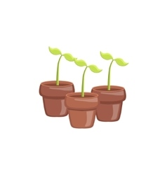 Set Of Three Sprouts In Pots vector image vector image