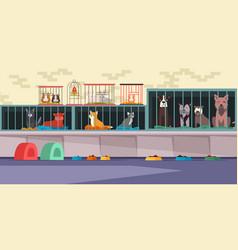 Animal shelter pet shop flat vector