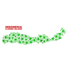 Cannabis leaves mosaic flores island of indonesia vector