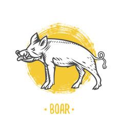 heraldic shields with boar vector image