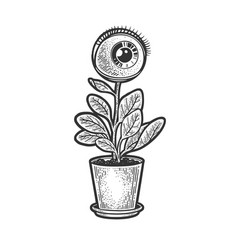 human eye plant sketch vector image