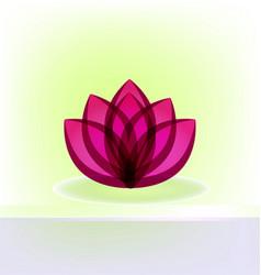 lotus flower card invitation design vector image