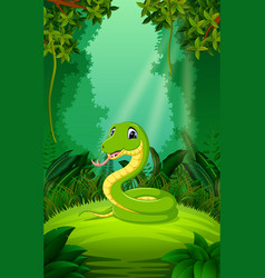 snake in the clear and green forest vector image