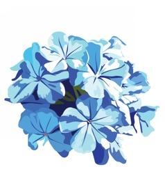 Watercolor Blue flowers bouquet vector