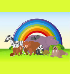 wild animals in the field with rainbow in vector image