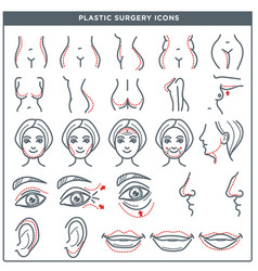 plastic surgery line icons for woman body vector image vector image