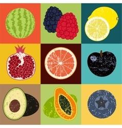 Pop Art grunge style fruit poster vector image vector image