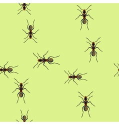 Trails Of Ants vector image vector image