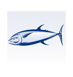 Bluefin tuna fish vector