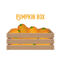 box with pumpkins basket with products vector image