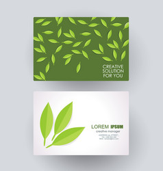 business card design with green leaves composition vector image