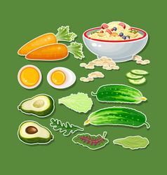 carrot cucumber avocado egg porridge and salad vector image