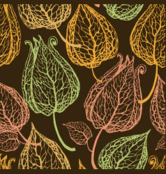 chinese lantern gooseberry or physalis seamless vector image