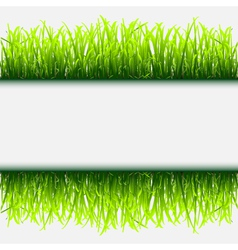 Green grass frame vector