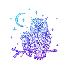 Night owls colorful sketch vector