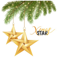 origami christmas holiday star on spruce vector image