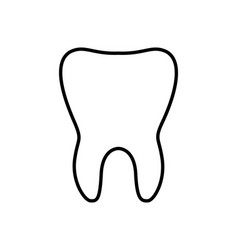 Tooth line icon dental vector