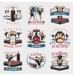 Colorful kickboxing emblems set vector