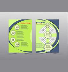 Brochure templates design green and gray color vector